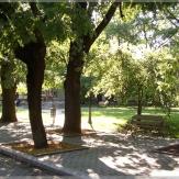 Nagybánhegyes - Park