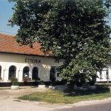 Pusztaföldvár - Étterem